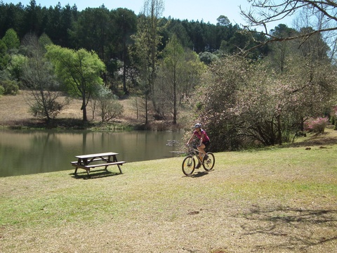 Mountain biking past trout dam